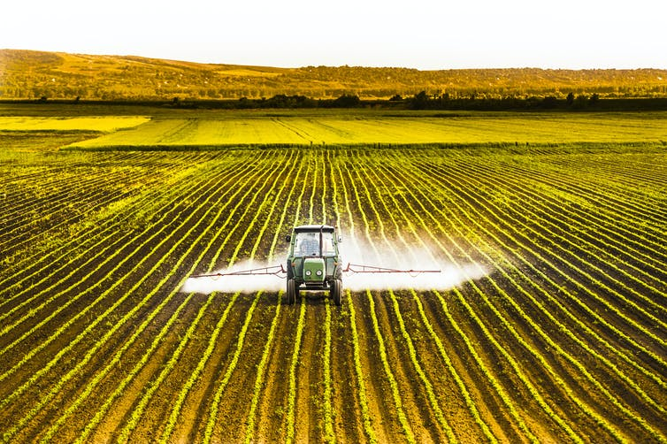 Pesticides are not a sustainable solution