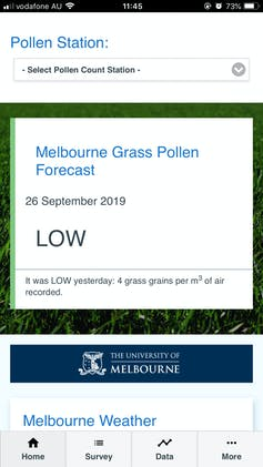 How to manage grass pollen exposure this hay fever season: an expert guide