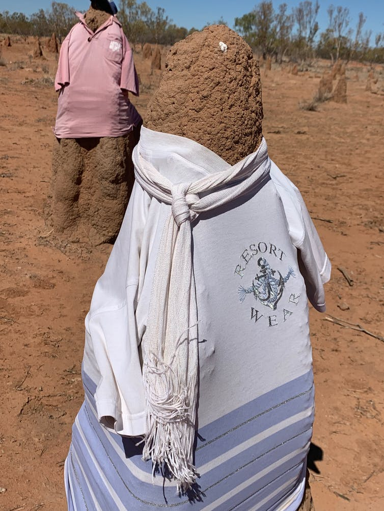 What the termite mound 'snowmen' of the NT can tell us about human nature