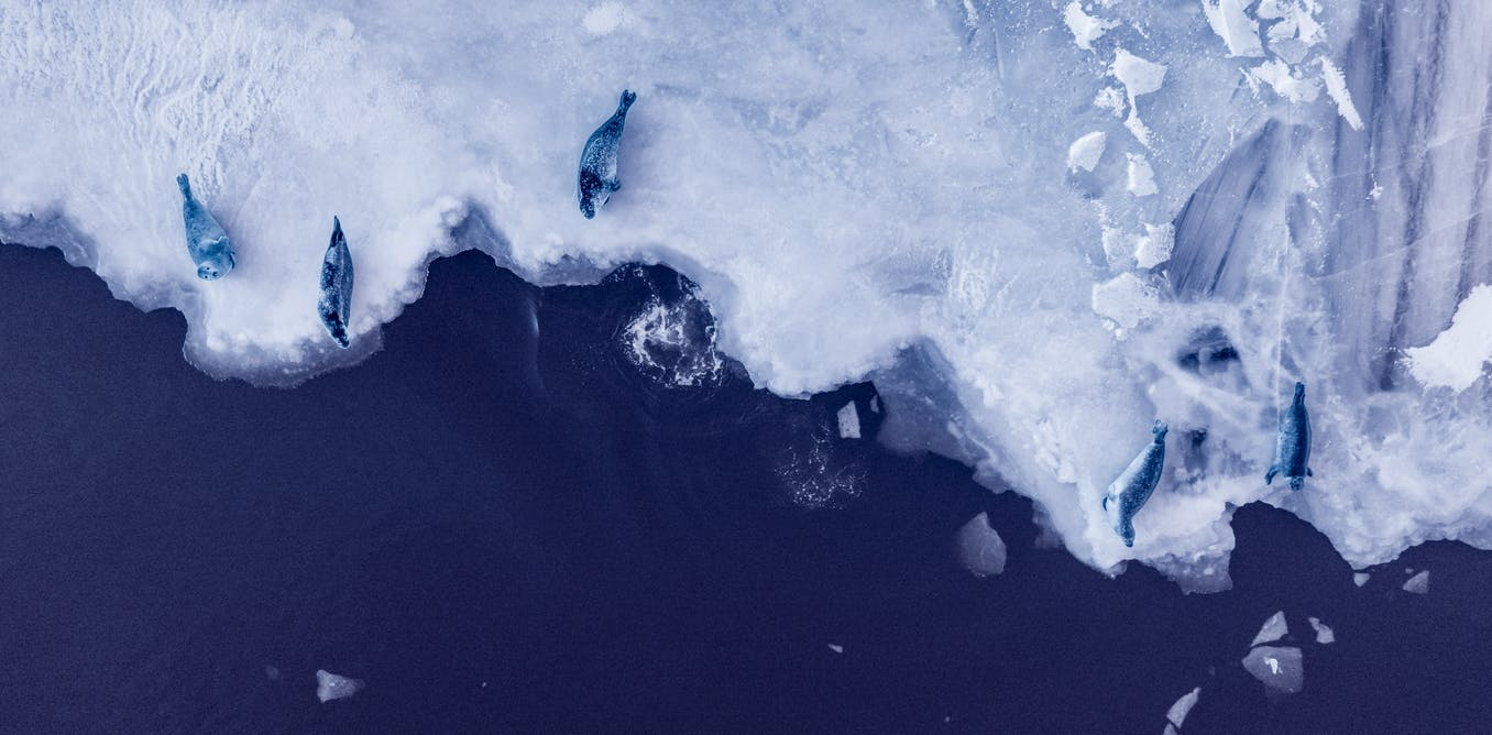 If warming exceeds 2°C, Antarctica's melting ice sheets could raise seas 20 metres in coming centuries