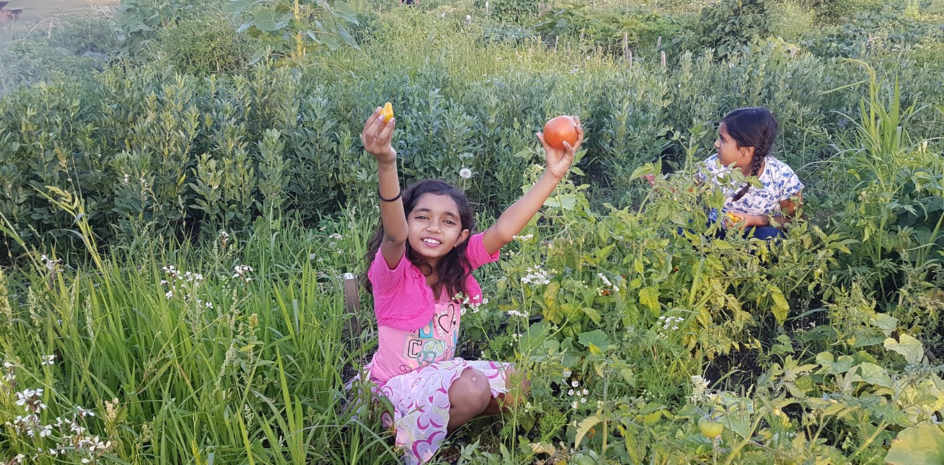 Growing a garden can also bloom eco-resilient, cross-cultural, food-sovereign communities