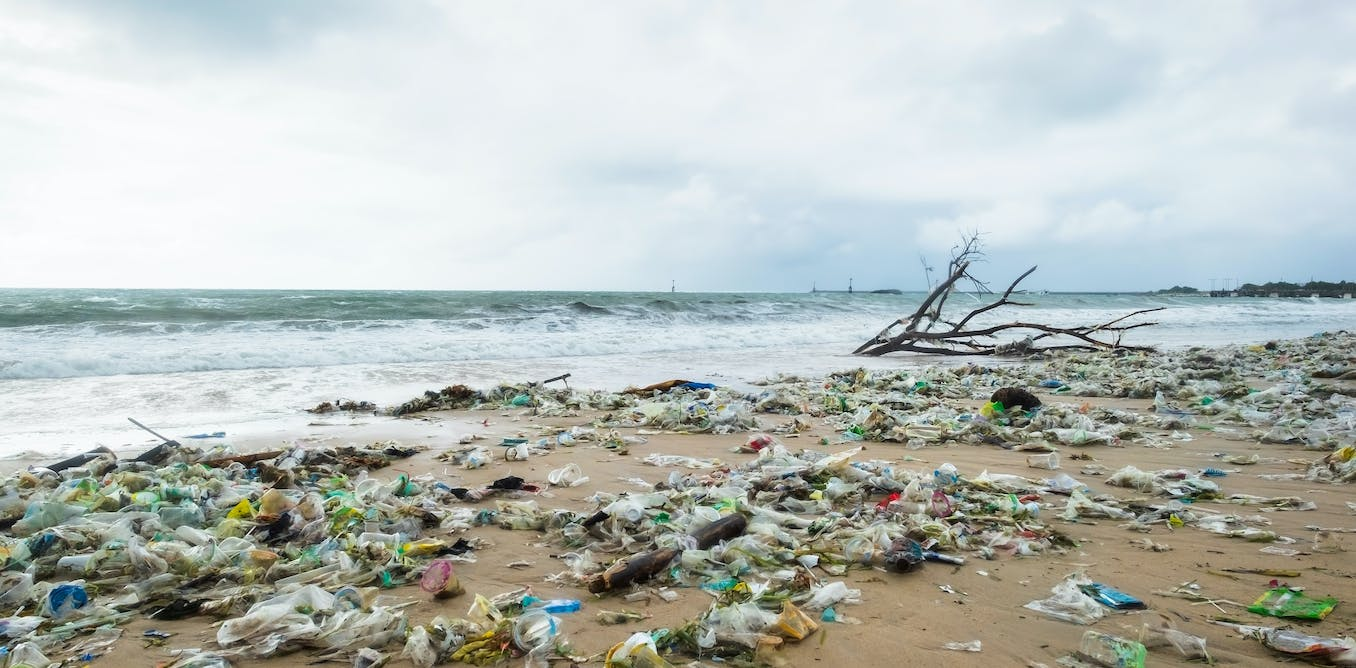 Indonesia needs more research on how plastic waste in the ocean impact marine life. Here's why