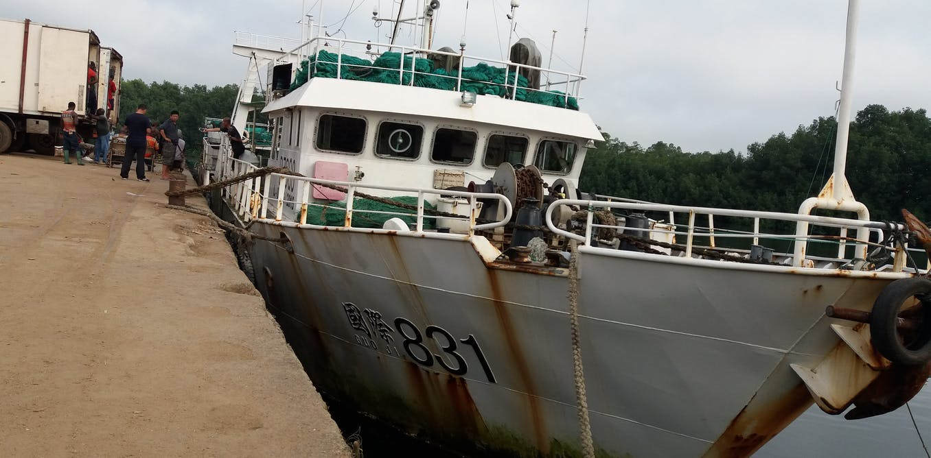 Cameroon can't afford to continue ignoring crime in fisheries sector
