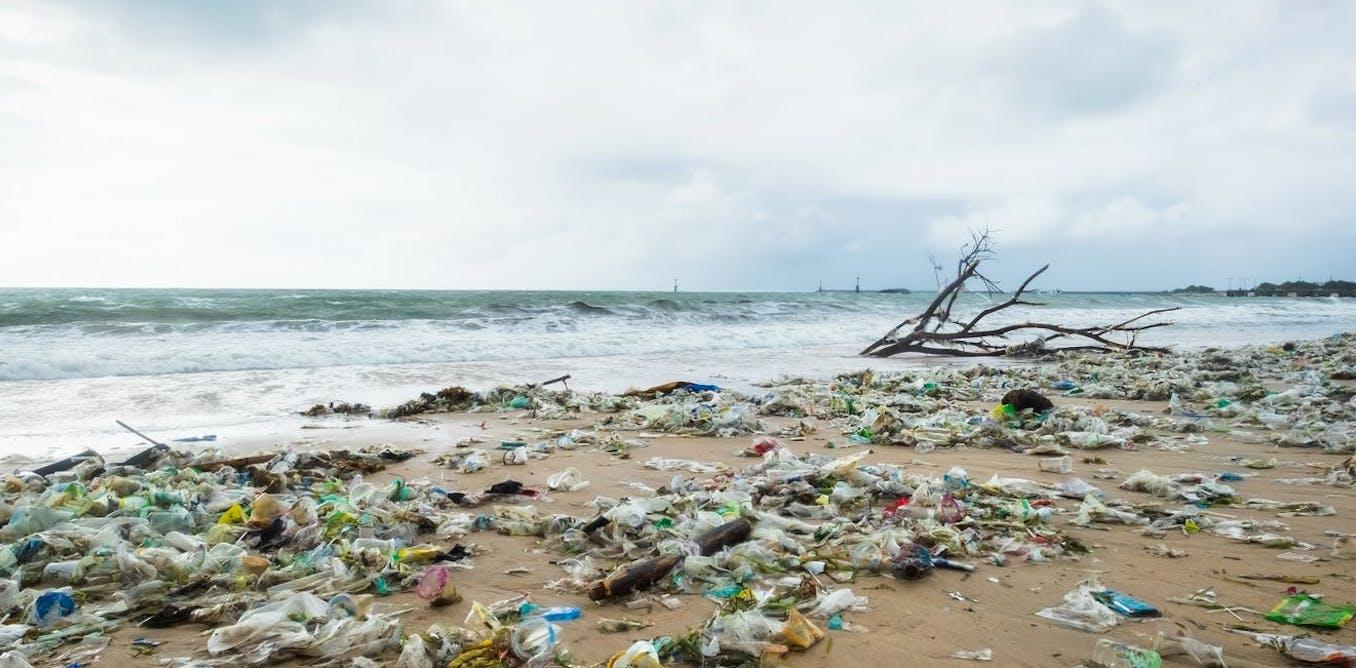 Indonesia perlu lebih banyak penelitian dampak sampah plastik di laut