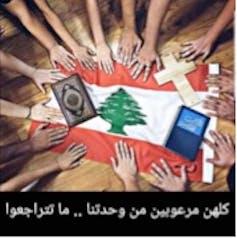 « Ils sont tous terrifiés par notre unité… ne reculez pas ! » FB Wissam Wael Beidas, Author provided