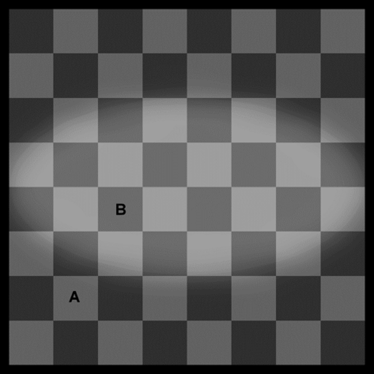 how does an optical illusion work?