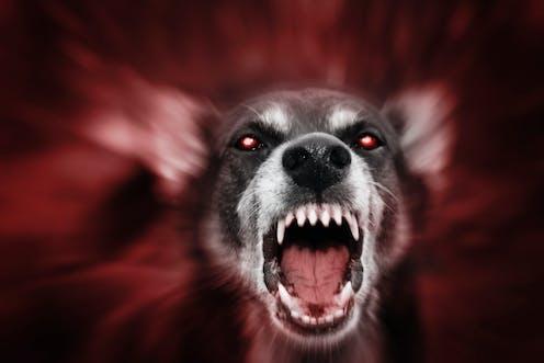 loups-garous datant