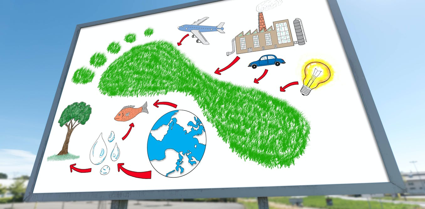 What is 'ecological economics' and why do we need to talk about it?