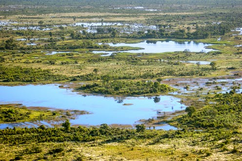 Botswana is humanity's ancestral home, claims major study – well, actually …