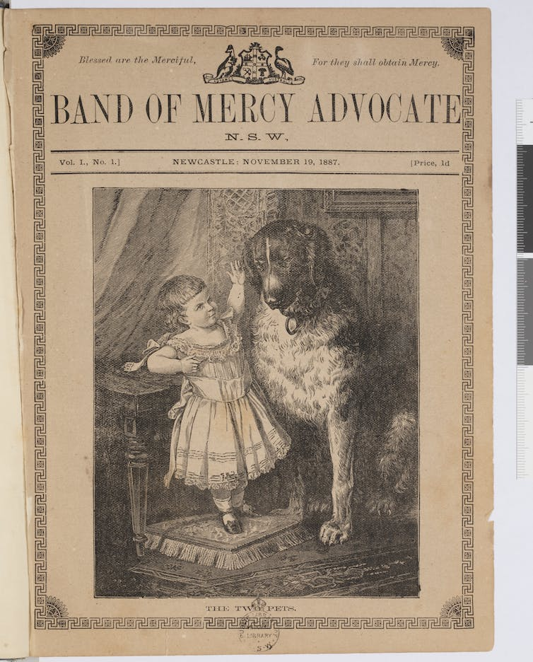 Hidden women of history: Frances Levvy, Australia's quietly radical early animal rights campaigner