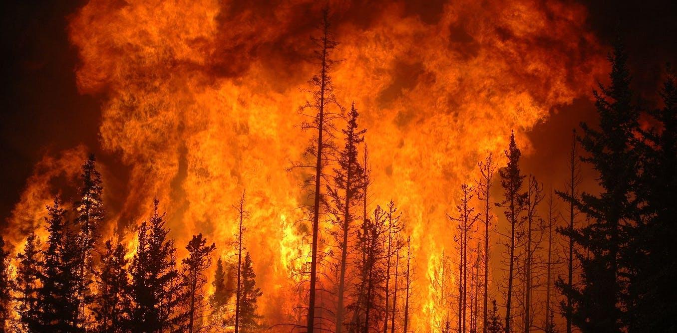Le développement durable en crise (climatique)