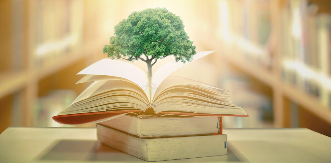Université : comment introduire le développement durable dans les formations ?