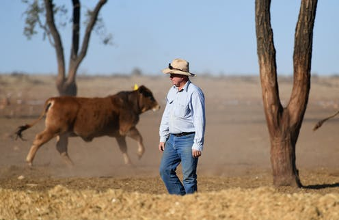 VIDEO: Michelle Grattan on the government's drought relief package and Labor's election post-mortem