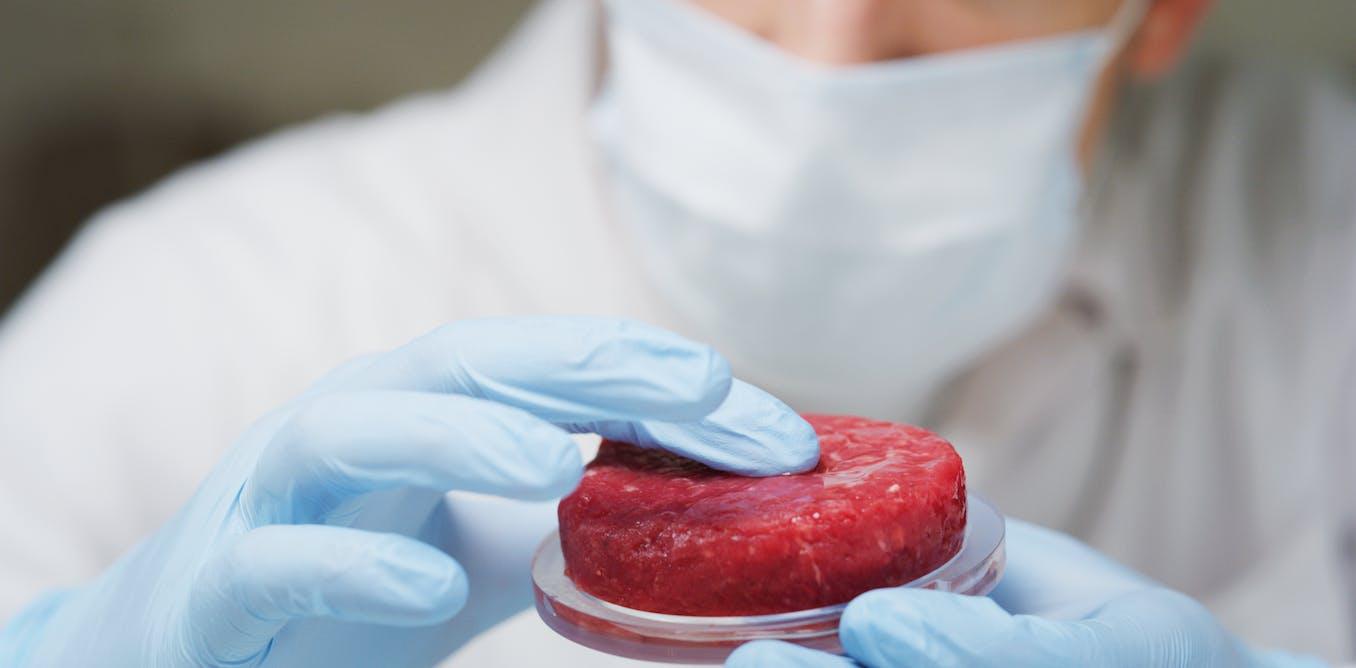 La viande «cultivée» pose plus de problèmes qu'elle n'en résout