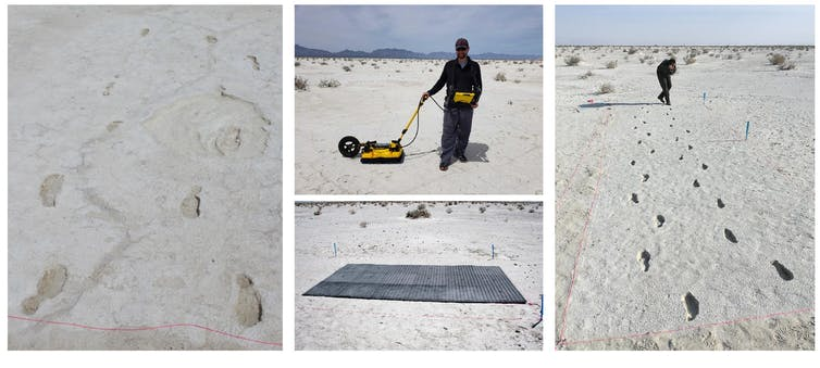 Ice Age footprints of mammoths revealed using radar-3