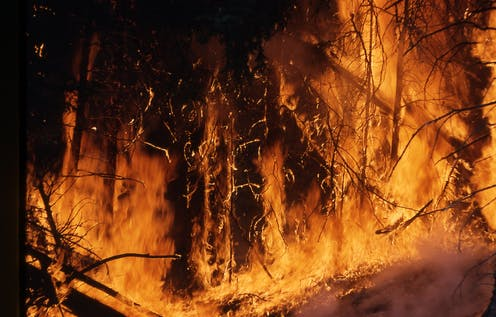 Virtual tools, real fires: how holograms and other tech could help outsmart bushfires