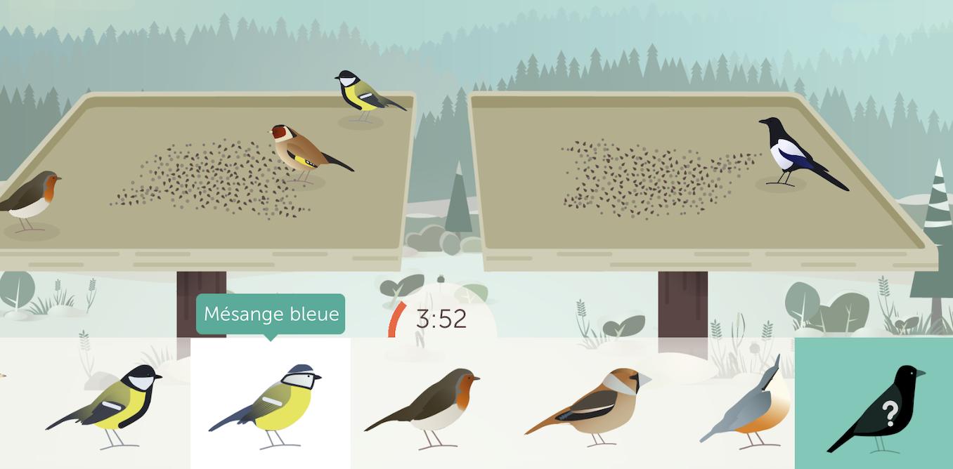 BirdLab, une application pour aider les oiseaux (et la science)
