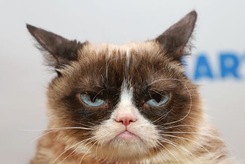 Unfortunately it's much more subtle than Grumpy Cat. But knowing your cat's 'resting face' could help.
