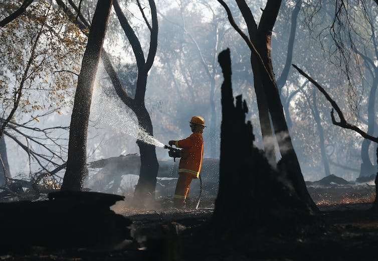 Humans light 85% of bushfires, and we do virtually nothing to stop it