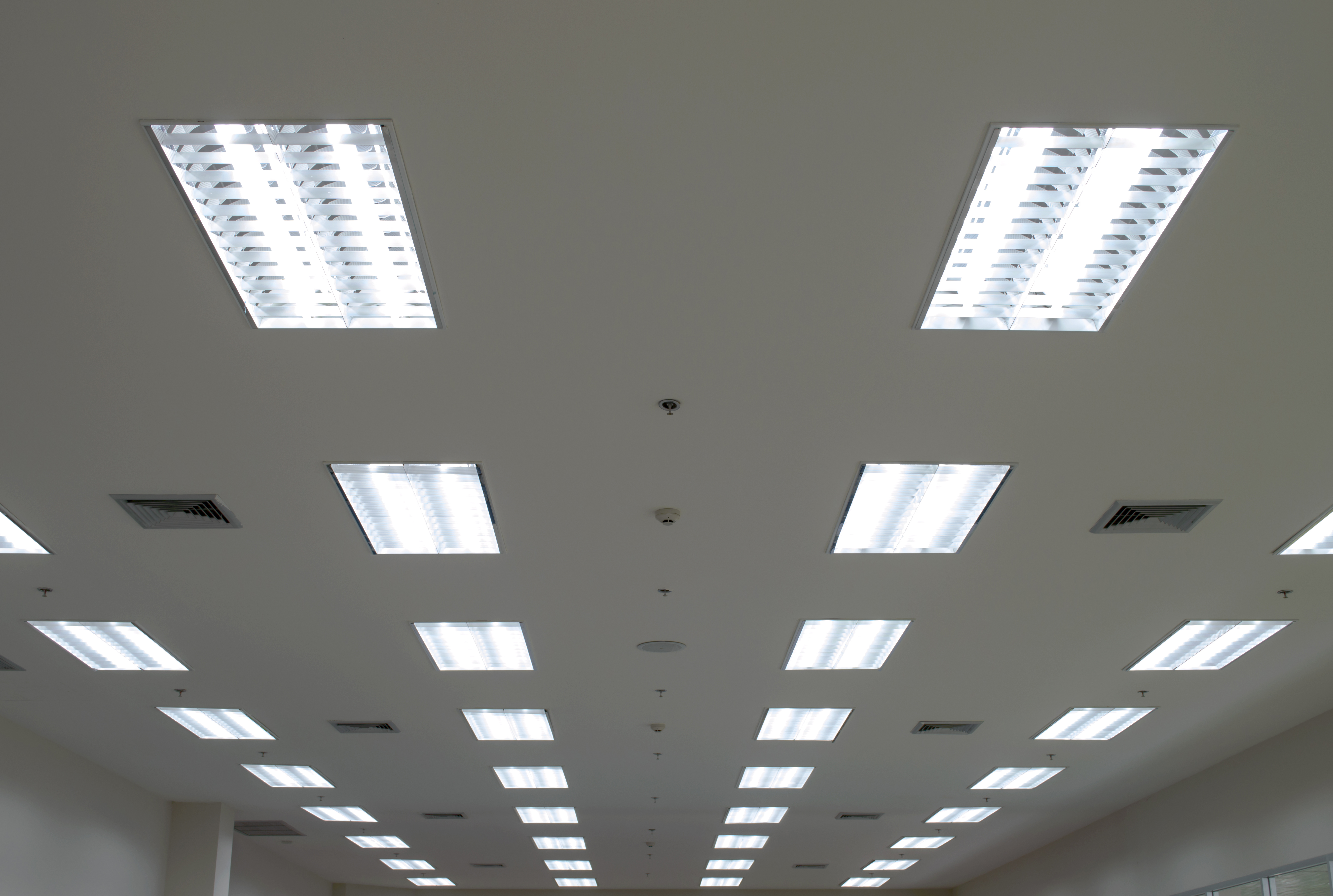 Fluorescent Lighting In School Could Be Harming Your Child U0026 39 S Health And Ability To Read