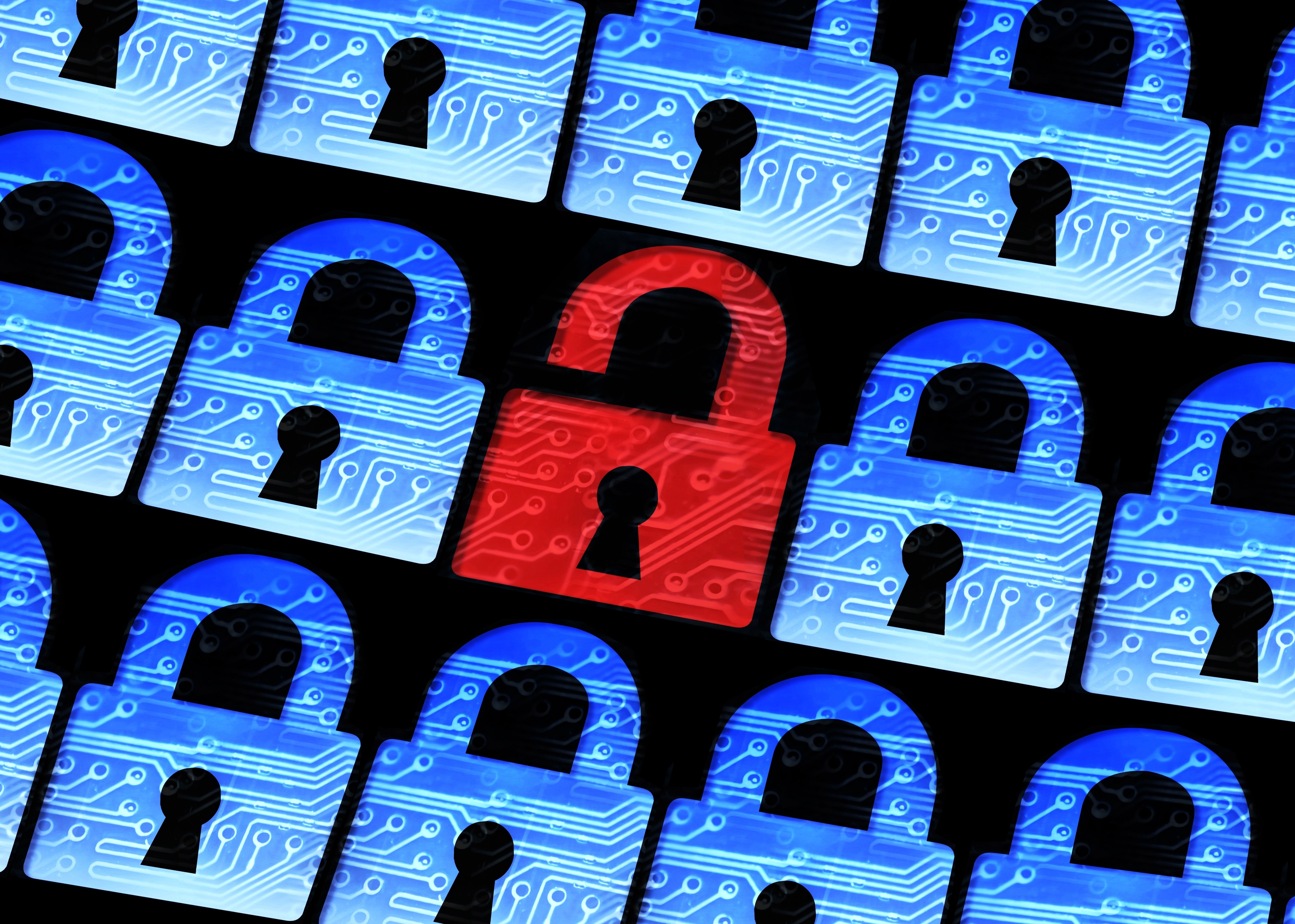 Growth in Data Breaches Shows Need for Government Regulations