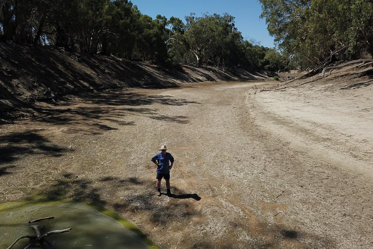 here's what to expect for the Murray Darling this summer