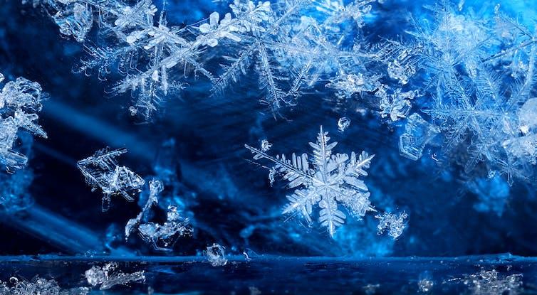 Snowflake photo