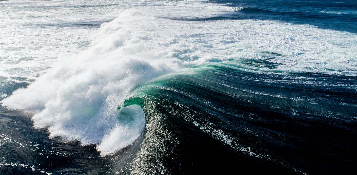 The story of a wave: from wind-blown ripples to breaking on the beach