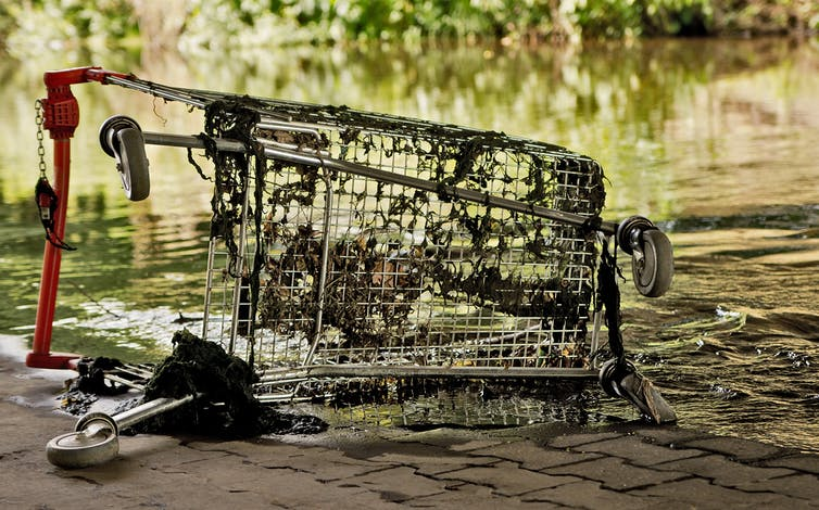 The war on abandoned trolleys can be won. Here's how