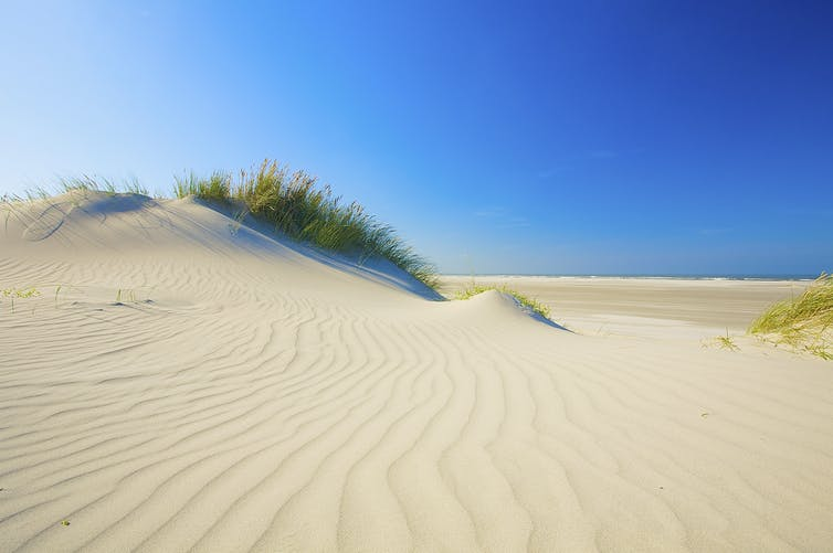 Where does beach sand come from?