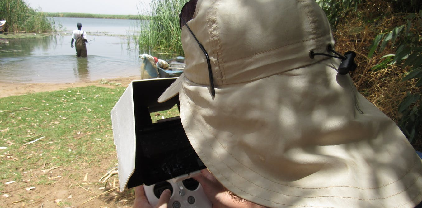 Identifying aquatic plants with drones could be the key to reducing a parasitic infection in people