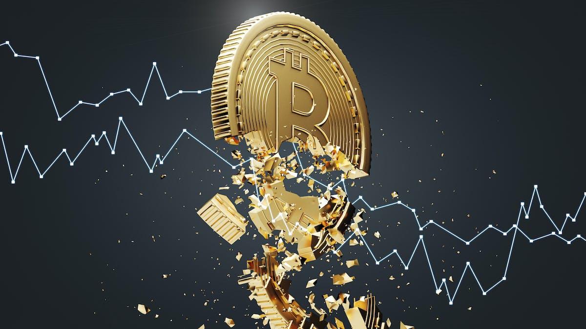 bitcoin draghi profit den