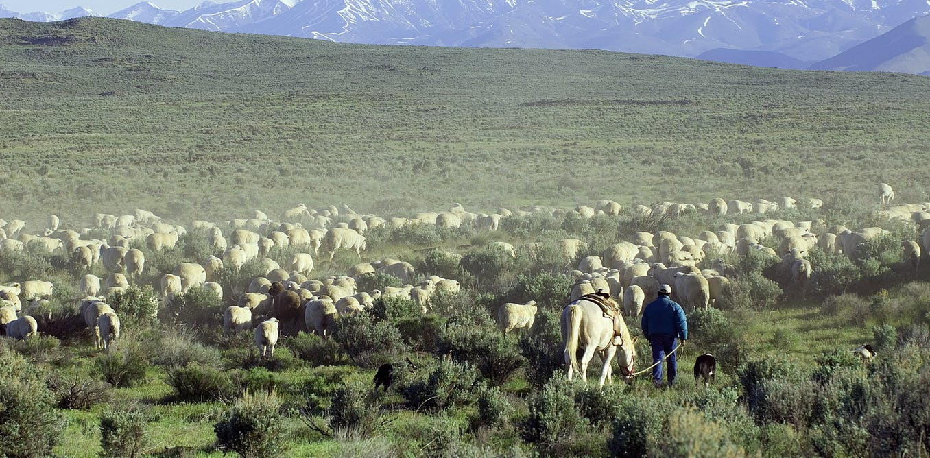 Moving Bureau of Land Management headquarters to Colorado won't be good for public lands