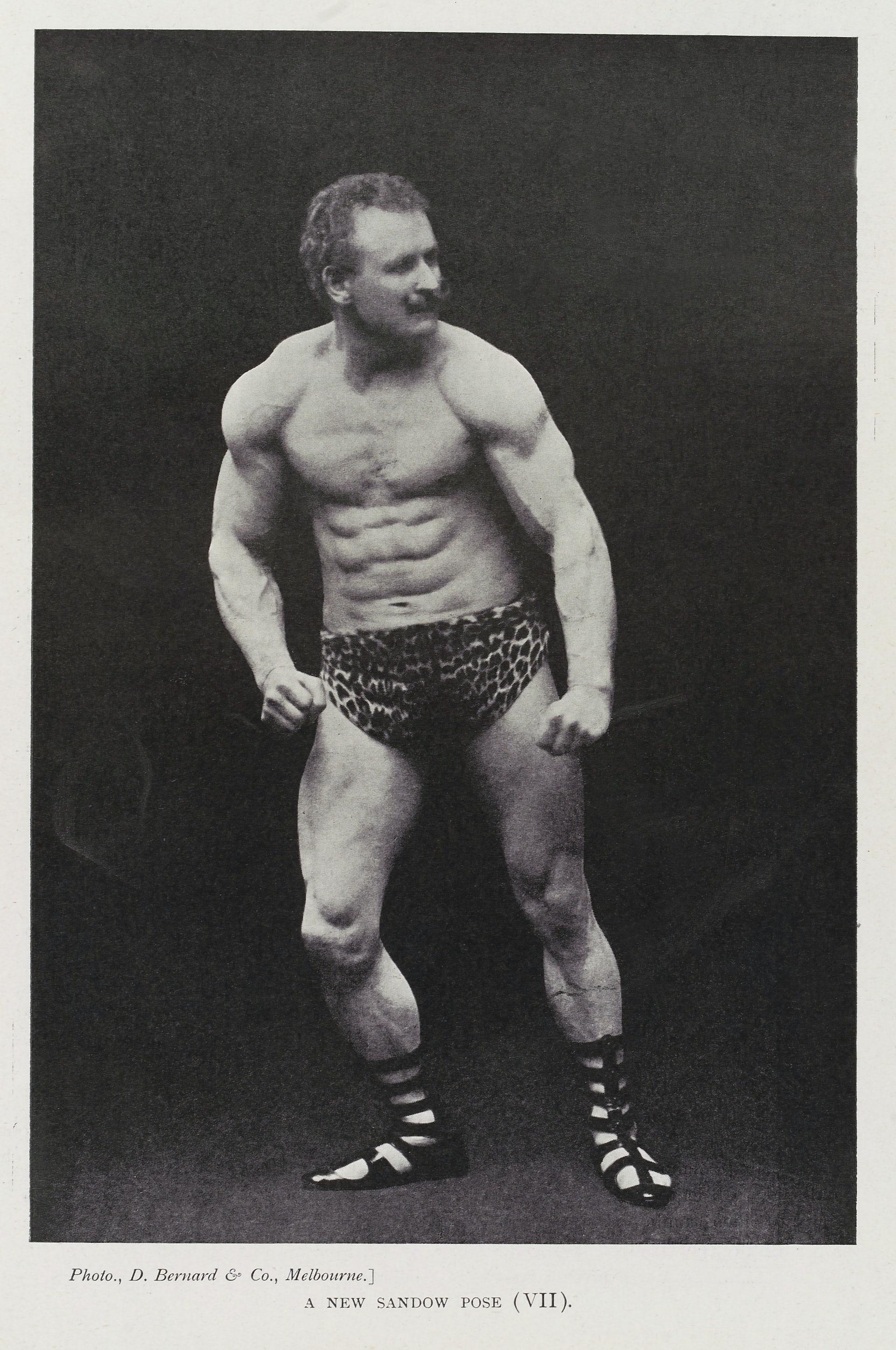 camisetas bodybuilding Question: Does Size Matter?