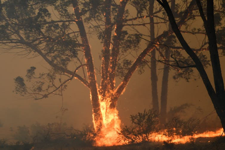 how Aboriginal people experience the bushfire crisis