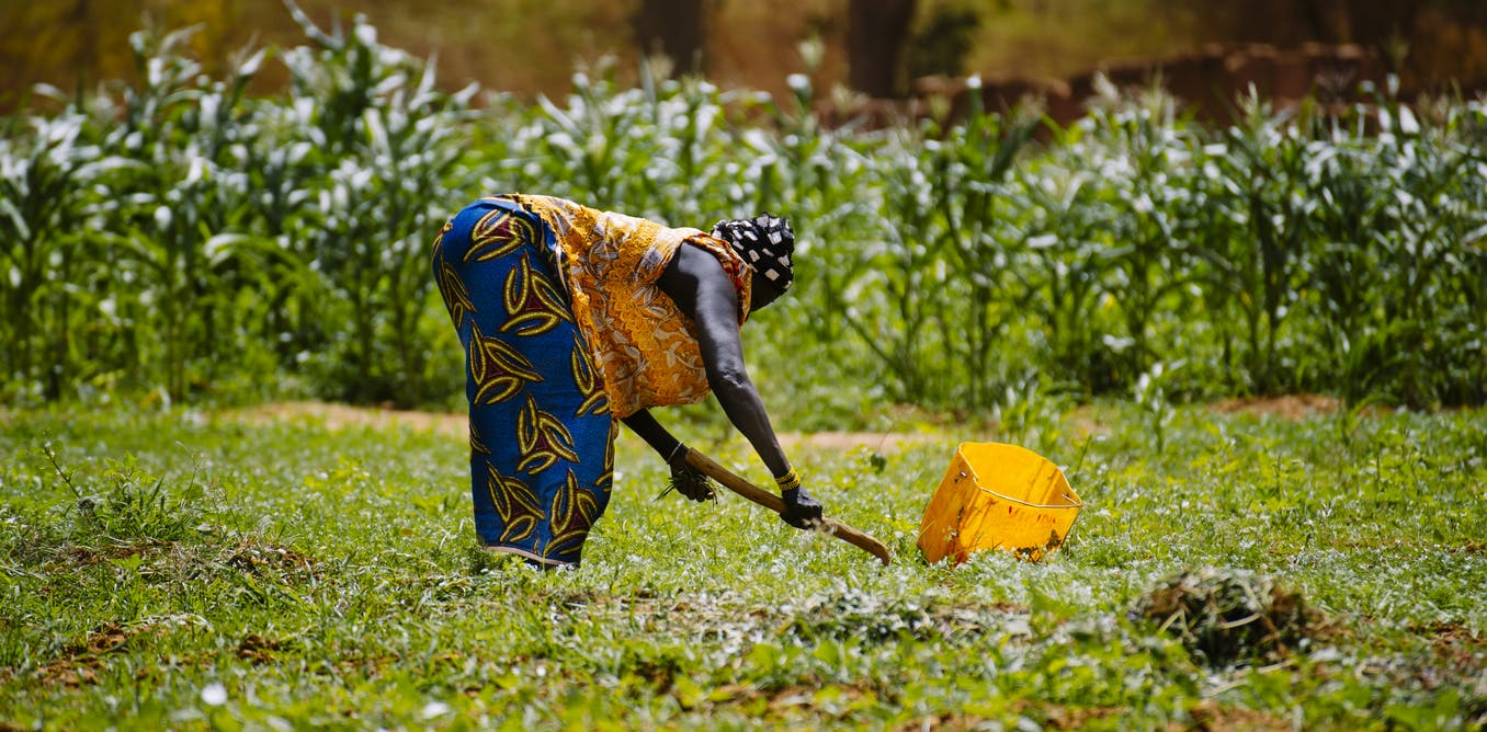 Burkina Faso study shows link between land degradation and migration