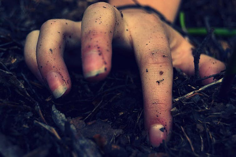 Pulling out weeds is the best thing you can do to help nature recover from the fires