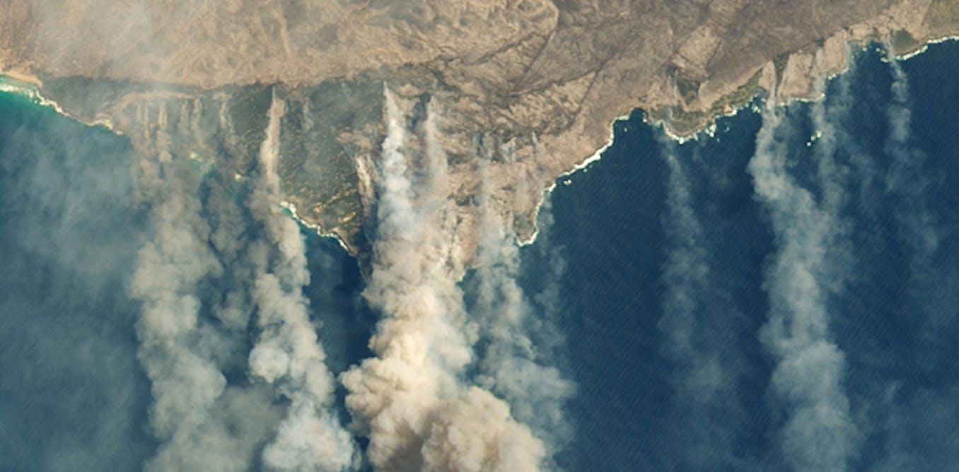 Où sont passées les 400 millions de tonnes de CO₂ rejetées par les incendies australiens ?