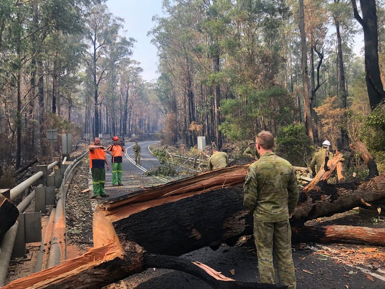 No food, no fuel, no phones: bushfires showed we're only ever one step from system collapse