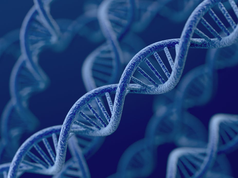 Four things you should know about gene patents