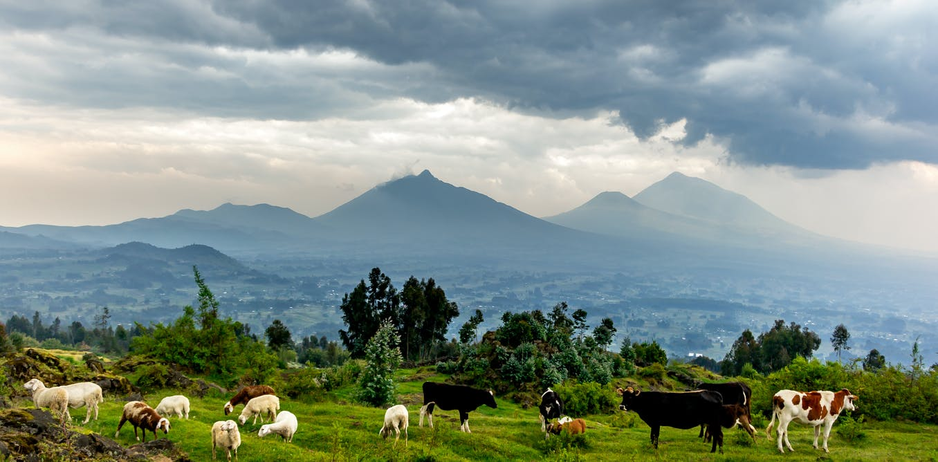 Rwanda is training health workers for an interconnected world