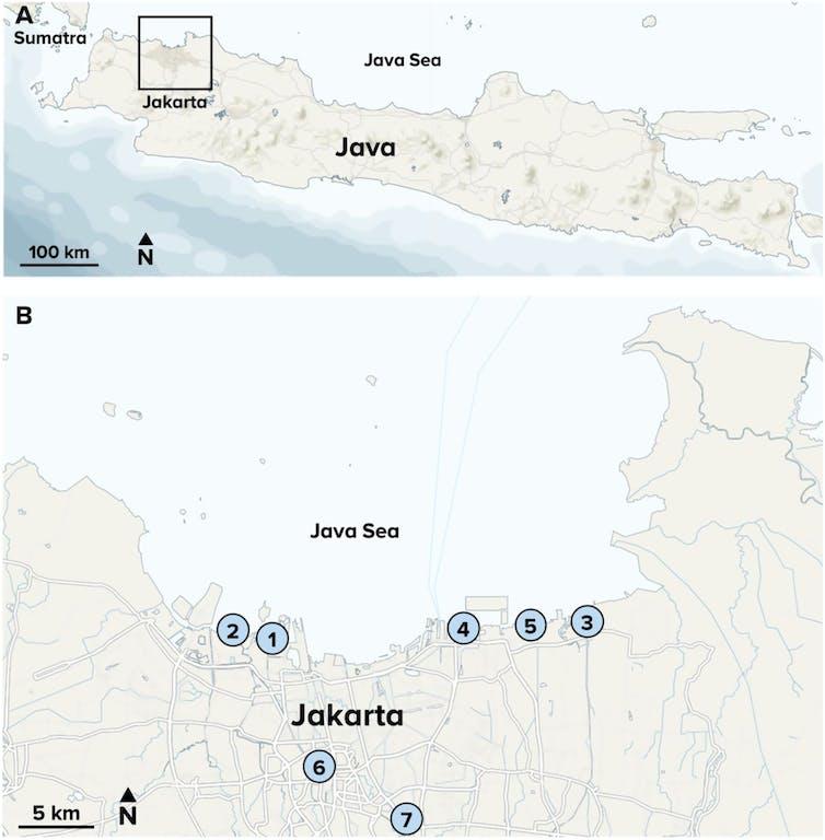 Riset: Ciliwung Termasuk Sungai Terkotor di Dunia - 2