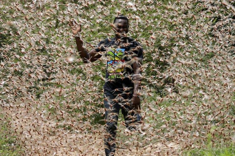 A man runs through a desert locust swarm in Kitui County, Kenya. DAI KUROKAWA/EPA