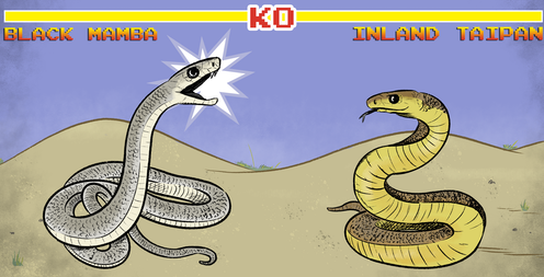 I've always wondered: who would win in a fight between the Black Mamba and the Inland Taipan?