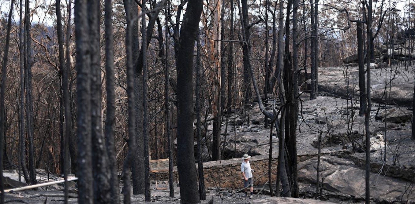 Après les incendies, le casse-tête de la pollution des eaux