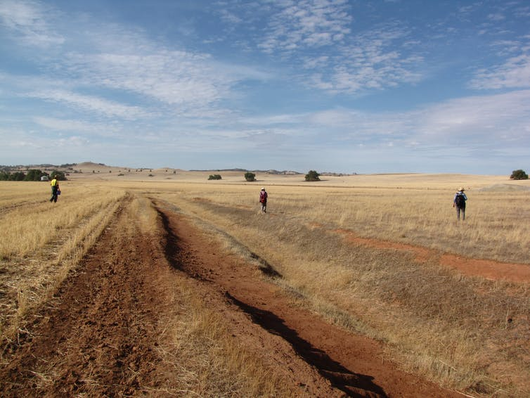 Unearthing a traditional Irish village that lingered in a South Australian field