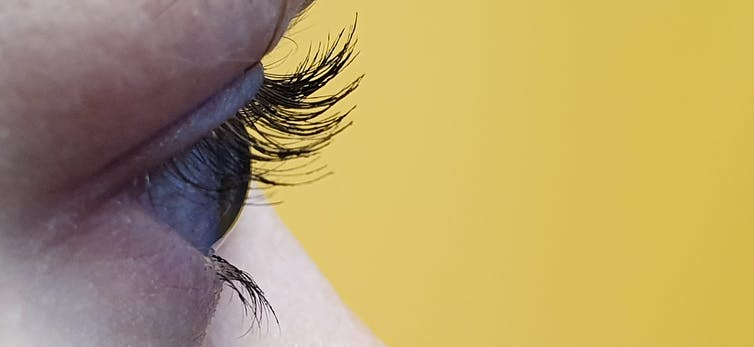 Curious Kids: why are our top eyelashes longer than our bottom eyelashes?