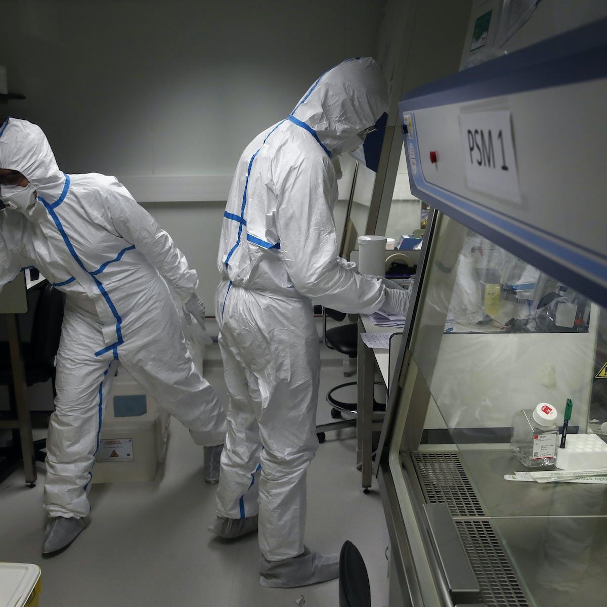 fir pentru varicoză comunicare plat și varicoză