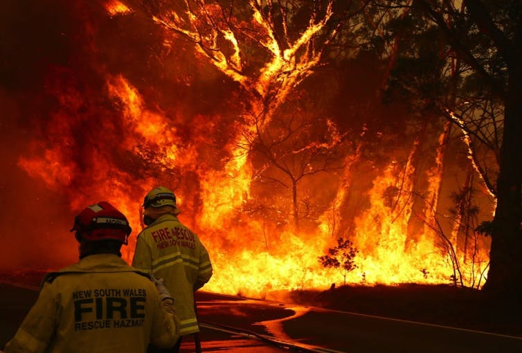 I've spent 14 years on bushfire front lines and seen courage in the face of death