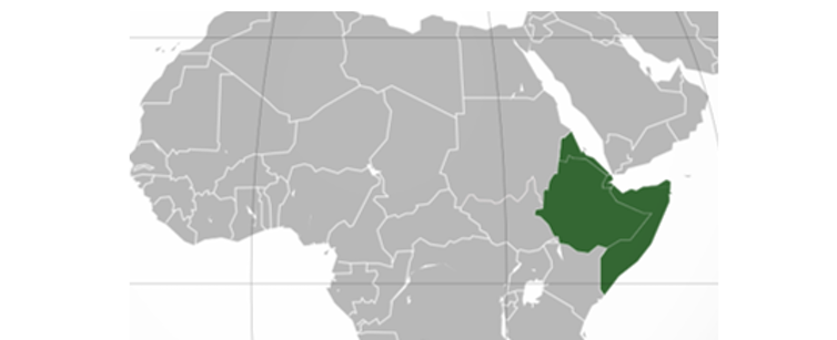Horn of Africa Cooperation: Mixed responses to new regional bloc